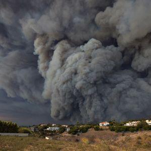 Skogsbränder i Kalifornien.