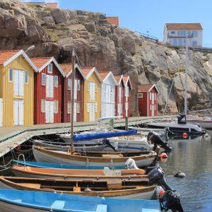 Veneitä ja värikkäitä venevajoja ruotsalaisen Smögenin kylän rannikolla.