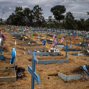 Suuri hautausmaa