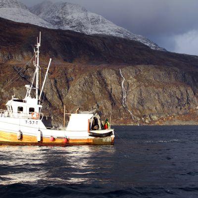 Räktrålaren Marina i Lyngenfjorden