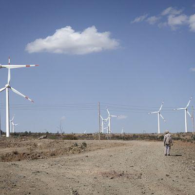 Adaman tuulipuisto Etiopiassa.