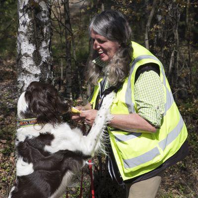 aasianrunkojäärän etsijä koira ja kouluttaja