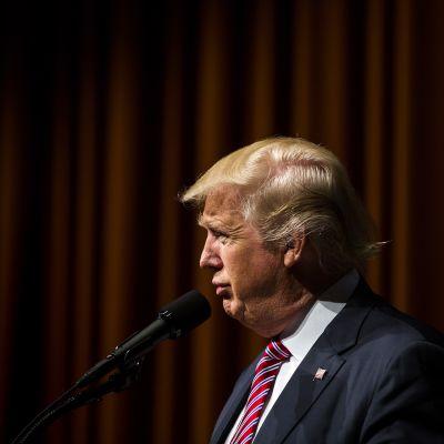 Donald Trump kampanjoimassa ashburnissa, Virginiassa 2. elokuuta.