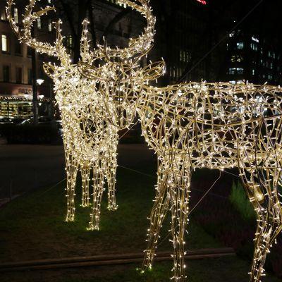 Jouluvaloilla valaistu Esplanadi.