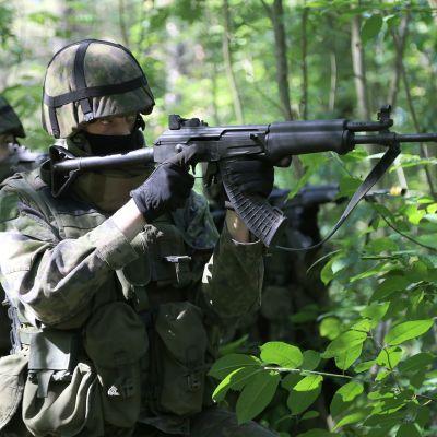 Armeija, hajoitukset