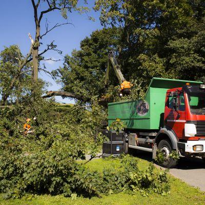 Myrsky aiheutti tuhoja laajalti ympäri pääkaupunkiseutua