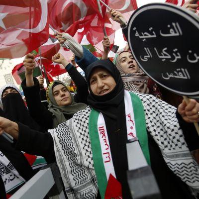 Mielenosoittajia, taustalla Turkin ja Palestiinan lippuja.