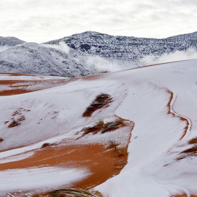 Lunta satoi Saharassa.