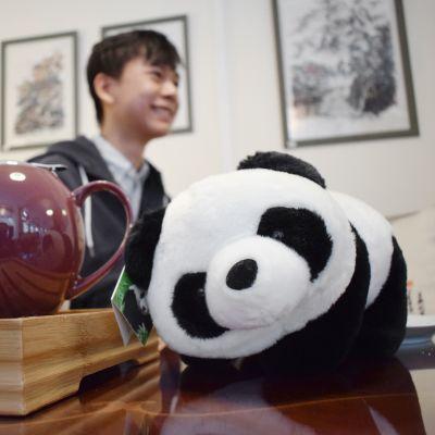 Lelupanda ja teekannu, taustalla Jian Cao.
