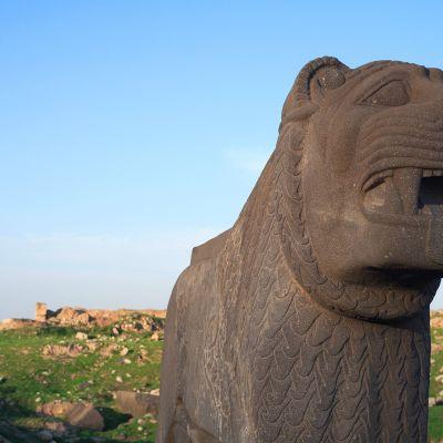 Ain Daran temppelin leijona.