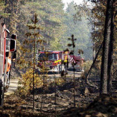 Pyhärannan metsäpalon sammutustöitä.