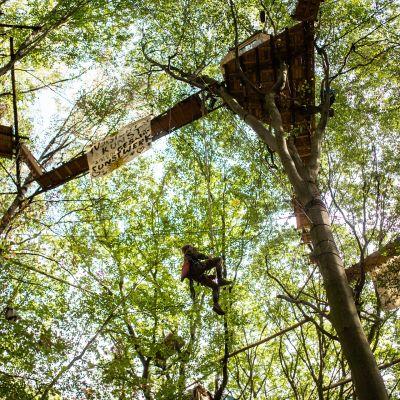 Luontoaktivisti kiipeää puumajaansa Hambachin metsässä.