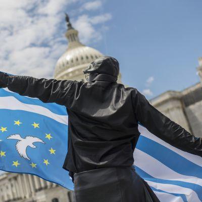 Mielenosoittaja heiluttaa Etelä-Kamerunin lippua Washingtonissa.