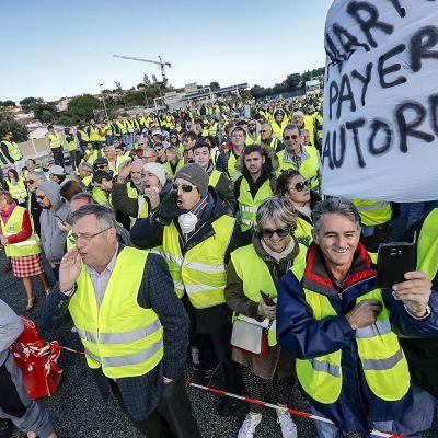 ihmisjoukko mielenosoituksessa