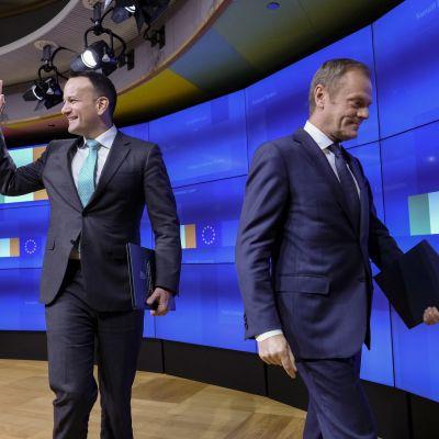 Irlannin pääministeri Leo Varadkar (vas.) ja EU:n huippukokouksia johtava Donald Tusk (oik.) keskustelivat brexitistä keskiviikkona Brysselissä.