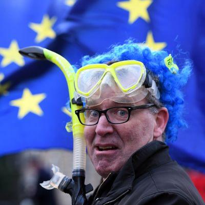 EU-jäsenyyttä kannattava mielenosoittaja oli varustautunut snorkkelilla tiistaina.