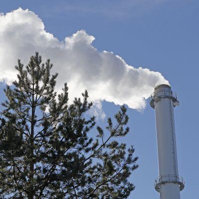 Savua nousee Joensuun Fortumin CHP voimalaitoksen piipusta.