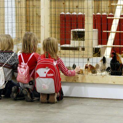 Lapset katsovat kanoja ja kukkoa Elma messuilla.
