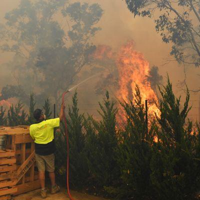 Työntekijä sammutti paloa Queanbeyanissa, Canberran lähellä Australaissa torstaina.