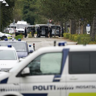 Poliisiautoja Madsenin kiinniottopaikalla.