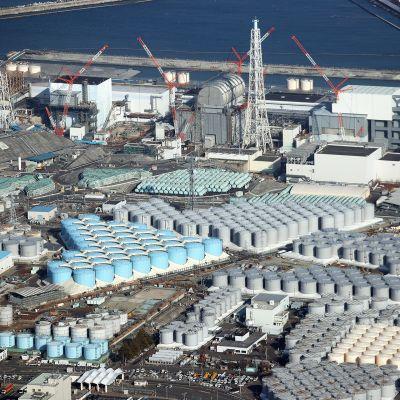 Saastunutta vettä sisältäviä säiliöitä Fukushiman voimala-alueella.
