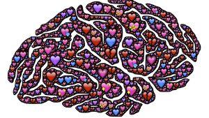 en hjärna med hjärtan i