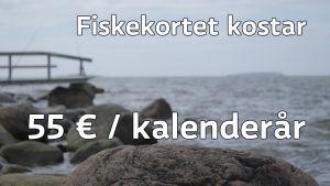 Fiskekortet kostar 55 euro per kalenderår.