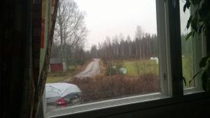 Kuva ikkunasta ulos pihatielle, jossa maalaismaisemaa.