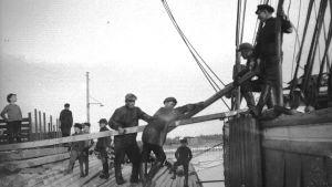 Rahtilaivaa lastataan noin 1920-40-luvulla