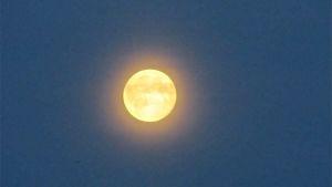 Bild på supermånen i Saarijärvi natten mellan den 12:e och 13:e juli 2014.