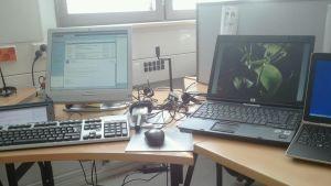 Datorer på skrivbord