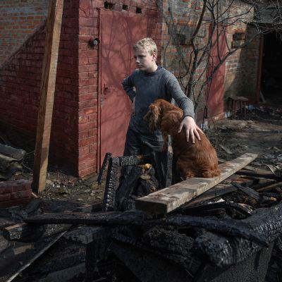 Poika ja koira tuhoutuneen kotinsa raunioilla Balaklijassa, Ukrainassa 24. maaliskuuta. Panssarivaunujen ammuksia säilyttänyt varasto räjähti sabotaasi-iskussa.