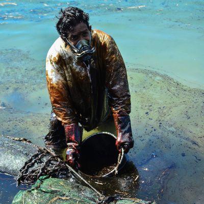 Mies kerää merestä öljyä ämpäriin.
