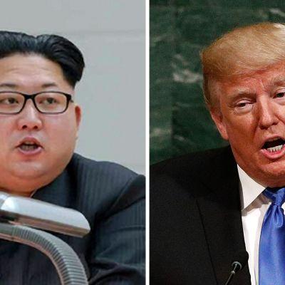 Donald Trump och Kim Jong-un.