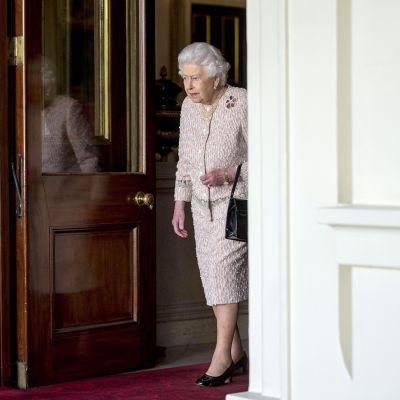 Kuningatar aloittamassa tapaamistaan Saksan liittopresidentin Frank-Walter Steinmeierin kanssa marraskuussa 2017.
