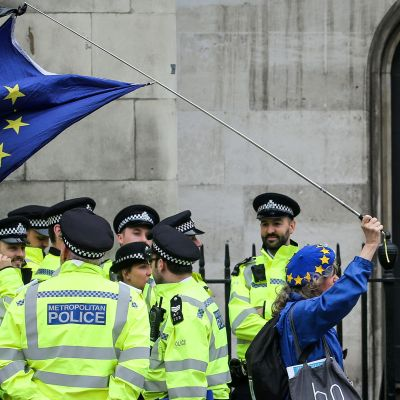 Brexitin vastustaja kantaa EU-lippua kepin päässä. Lippu hipoo poliisien päätä joiden ohi lipun kantaja on juuri kävelemässä.