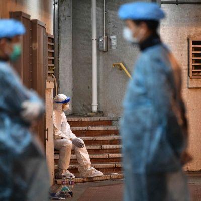 Lääkintähenkilöitä suojapuvuissa asuinrakennuksen edustalla Hongkongissa.