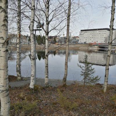 Jokimaisemaa Kajaanissa.