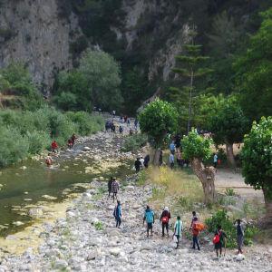 En grupp migranter försöker ta sig över gränsne mellan Italien och Frankrike sommaren 2017.