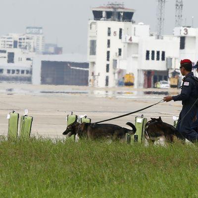 Viranomaisia ja koiria harjoituksisa kiitoradan laitamilla.