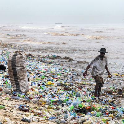 Kaksi miestä kerää purkkeja säkkeihin rannalla, joka on täynnä kirjavaa muovijätettä.