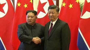 Ett handslag mellan Nordkoreas ledare Kim Jong-Un och Kinas president Xi Jinping inför kinesisk tv i Peking på tisdagen den 27.3.