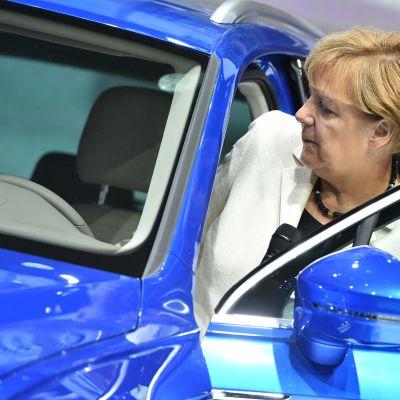 Angela Merkel istuutuu autoon.