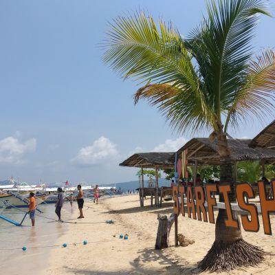 Starfish Island on turistisaari Filippiinien Palawanin lomasaaren kupeessa. Saari sijaitsee Honda Bayssä Palawanin suurimman keskuksen Puerto Princesan lähistöllä.