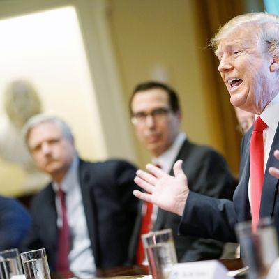 Donald Trump puhuu siirtolaisasiasta kongressin edustajien kanssa.