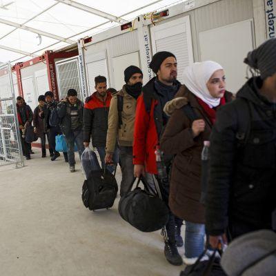 Siirtolaisia odottamassa vastaanottokeskukseen pääsyä Itävallan ja Slovenian rajalla.