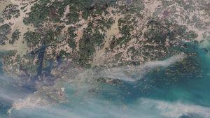 En satellitbild över Raseborg och Hangö där alla vattendrag ser bruna ut i jämförelse med det öppna havet (Finska viken).