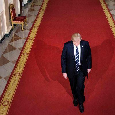 Donald Trump kävelee valkoisen talon käytävällä.