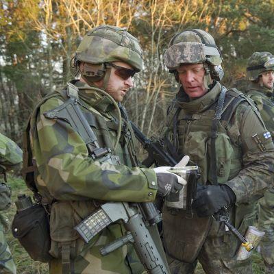 Ruotsalaisia ja suomalaisia sotilaita Skövdessä marraskuussa 2010.