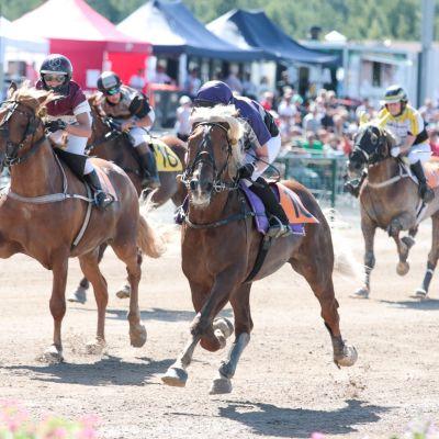 Hevosia ratsastajineen Montén Suomen mestaruuslähdössä.